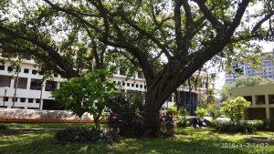 Udyog Bhava, Goregaon East, Mumbai, India